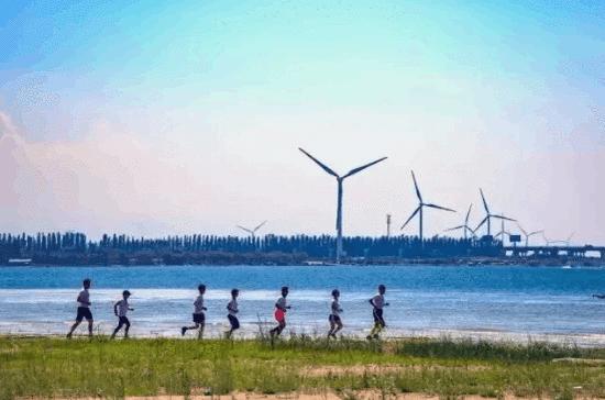 金风科技——北马背后的绿色能源领跑者