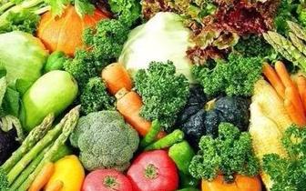 1月无极4娱乐官网下载地址市蔬菜价格呈整体上升态