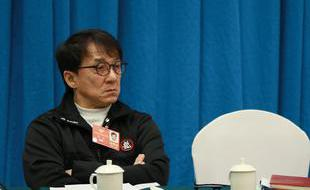 成龙出席政协文艺界别小组讨论会