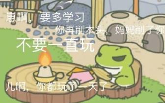 曲一刀:因为养了一只蛙,我突然理解了爸妈
