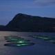 渔业养殖也用上高科技