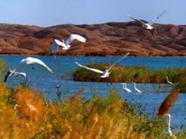甘肃省将实行湿地面积总量管控