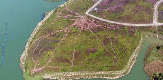 重庆石柱毁湿地5000亩仅招3个厂 媒体:脸打得太痛