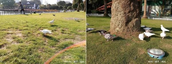 PRO 6s评测Part 2相机篇:一样的IMX386、不一样的光学防抖的照片 - 24