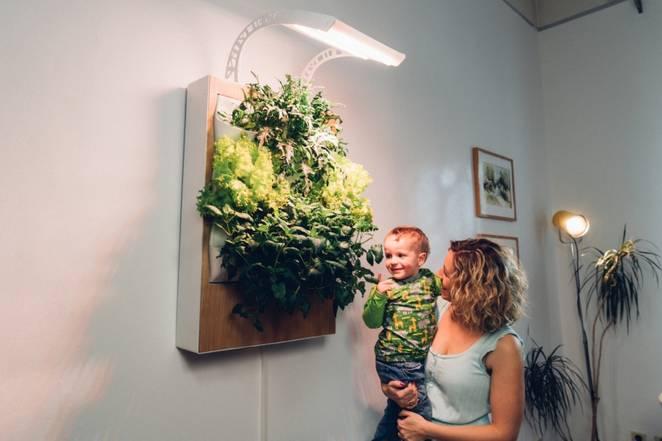 """想在家里种菜?Herbert让家里的每一面墙都变成""""菜地""""的照片 - 6"""