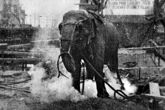 爱迪生138年的电灯生意要卖了 但电网将永存的照片 - 5