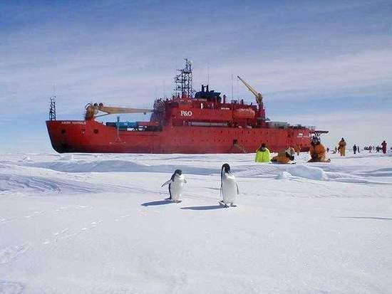 担心在南极衰落 澳斥资20亿澳元建破冰船