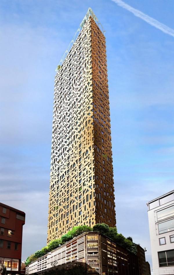 """""""树屋""""设计到80层了 木材也能建摩天楼?的照片 - 7"""