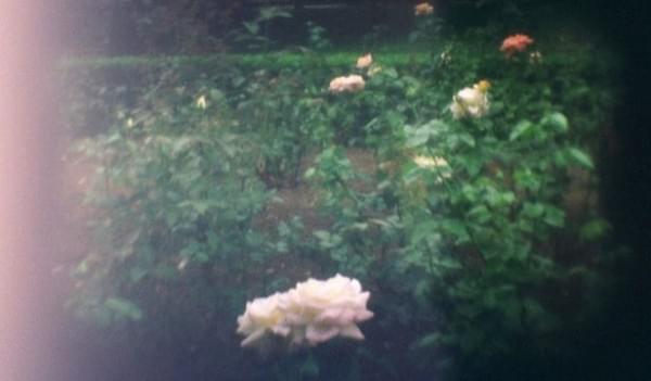 SLO:连镜头和快门都是3D打印的35mm胶卷相机的照片 - 14