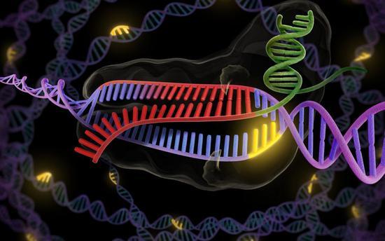 gene-editing technique CRISPR can heal can also resurrect extinct species?