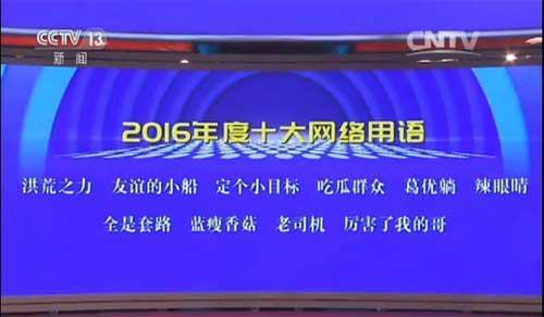 2016年度流行词出炉 洪荒之力等当选十大网络用语的照片 - 3