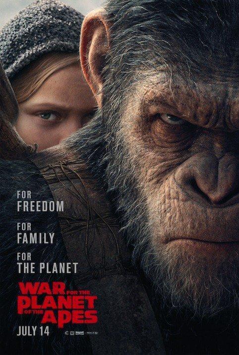 猩球崛起3终极之战 全新预告:凯撒踏上复仇之战的照片 - 2