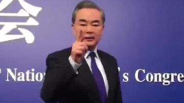 """""""精日""""分子挑衅民族底线 王毅怒斥:中国人的败类"""