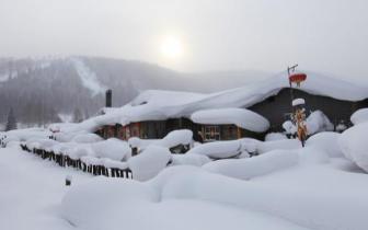 雪乡获评国内十大最受欢迎森林公