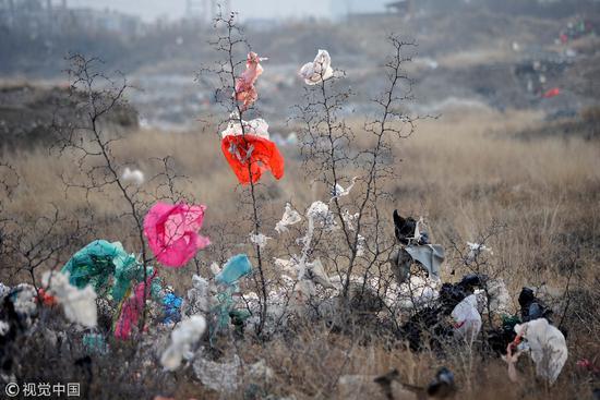 """塑料袋真是""""人類史上最糟糕的發明""""嗎?"""